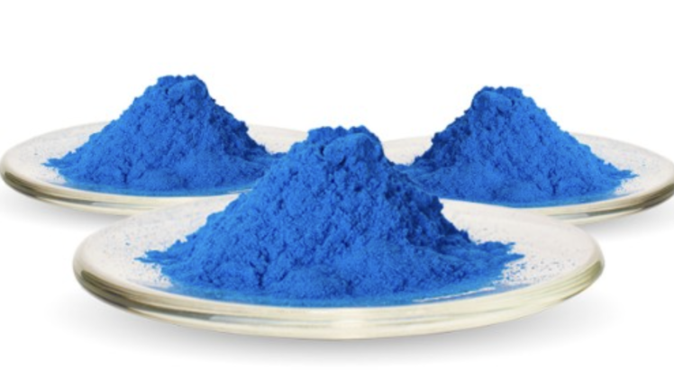 BINMEI Phycocyanin Successfully Passed the EU and USDA Organic Certification