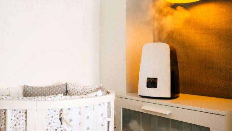What are the Best Humidifier and Air Purifier