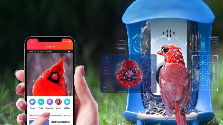 palprot smart bird feeder